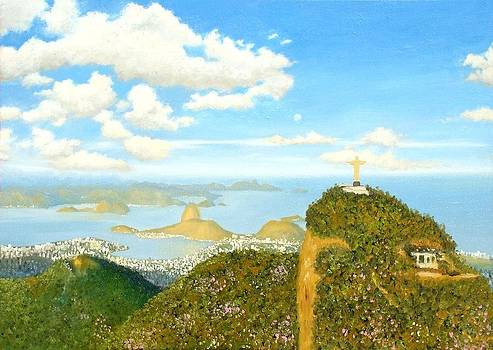 Rio de Janeiro - Air View by Wagner Chaves