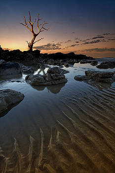Ripples in the sand by Mark Leader