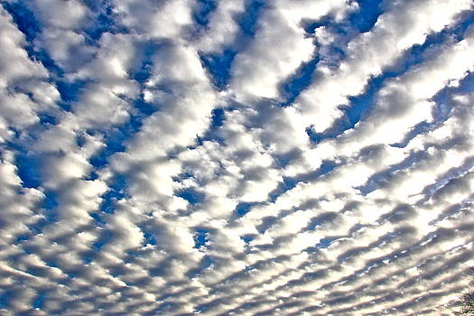Rippling Clouds by Liz Vernand