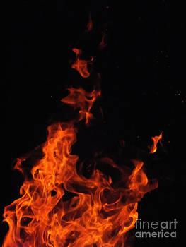 Rising Flame 2 by Melissa Lightner