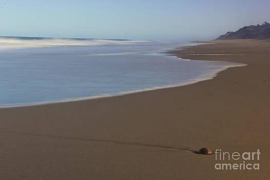 Amazing Jules - Rising Tides