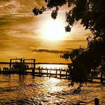 River Acres Jaynes Sunset by Joan Meyland