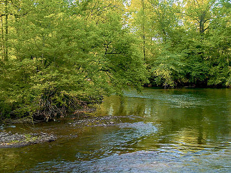 River Bend by Robert J Andler