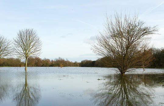 Fizzy Image - River Blackwater Braintree Floodwaters.