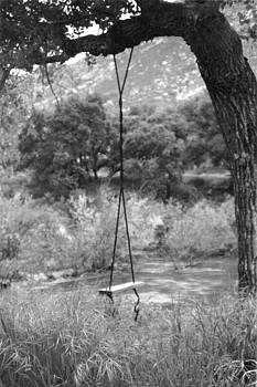 Randall Thomas Stone - River Cottonwood Tree Swing