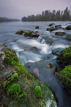 River detail by Davorin Mance