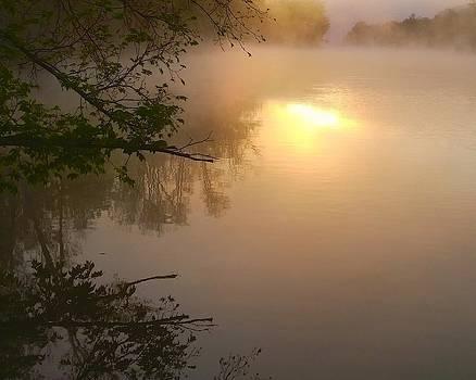 River Fog Sunrise by Larry Bodinson