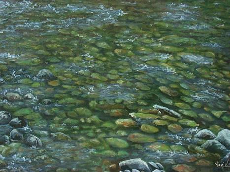 River Ganga -clear waters by Manjula Prabhakaran Dubey