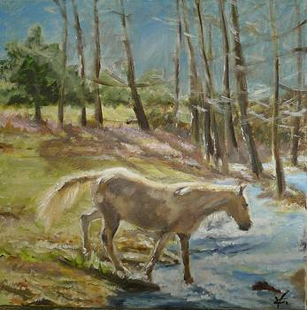 River Horse by Veronica Coulston
