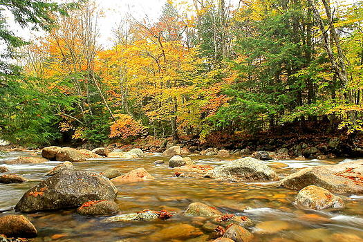 Amazing Jules - River in Fall Colors