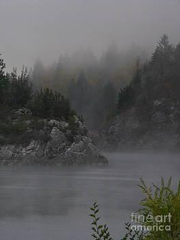 River Island by Greg Patzer