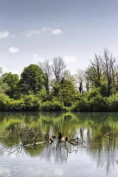 River Landscape by Pier Giorgio Mariani
