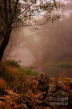 River Mist on a Mystical Morning by Blair Stuart