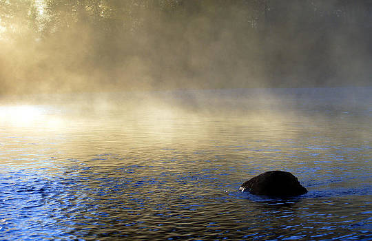 River Mists and Boulder by J Foster Fanning
