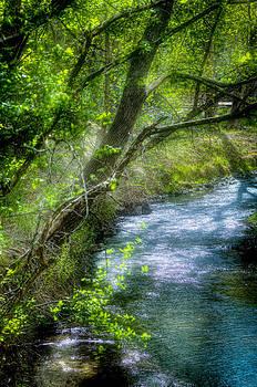 River of Dreams by Helene Kobelnyk