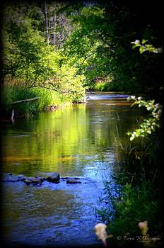 River Peace by Terri K Designs