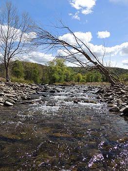 Anastasia Konn - River rapids