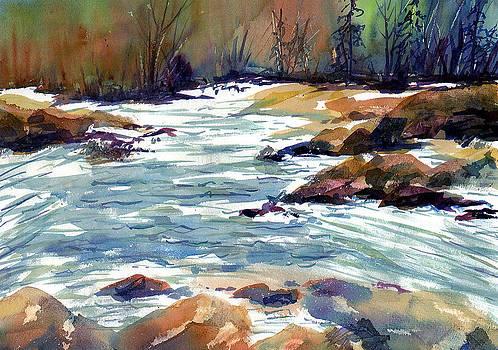 Susan Duxter - River Rapids