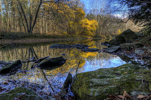 River Reflection by David Dufresne