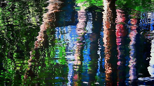 River Reflection by Dulce Levitz