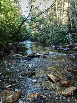 River Rockin by Annette Allman