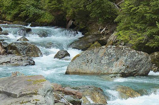 River Rocks by Sylvia Hart