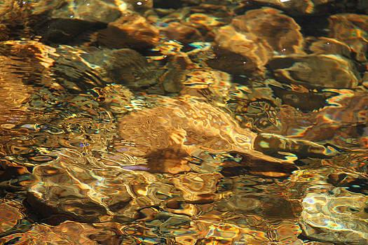 River Rocks by Thomas Rehkamp