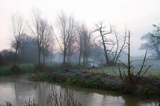 Fizzy Image - River running through misty fields