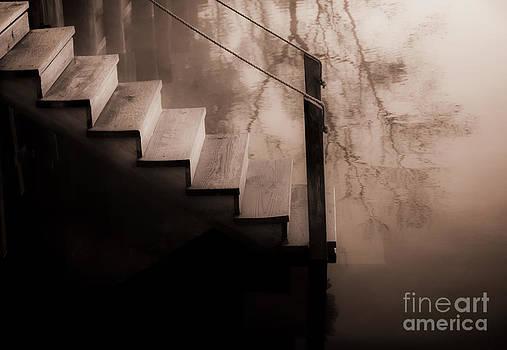 River Steps by Beth Riser