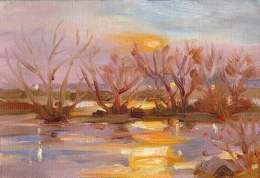River Sunset by Owen Hunt