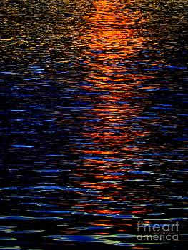 Robyn King - River Sunset
