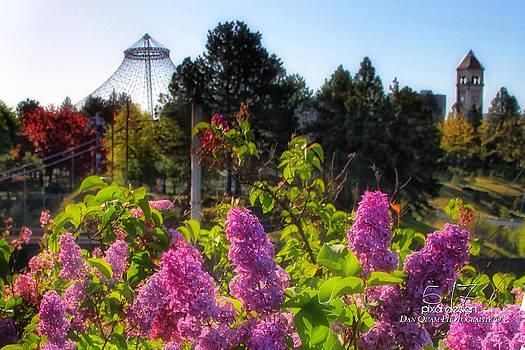 Riverfront Park Lilac by Dan Quam
