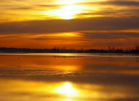 Riverlands Sunrise by Sean Murray