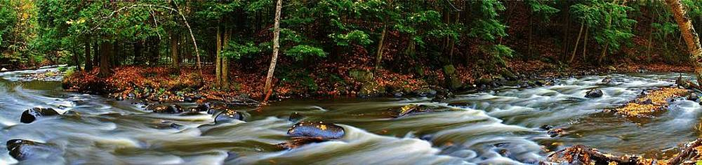 Rivers Edge by Burland McCormick