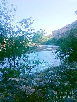 River's Edge by Debbie Wells