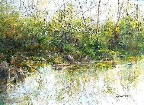 River's Edge by Elizabeth Crabtree