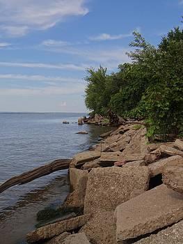 River's Edge by Jamie Johnson