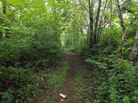 Gene Cyr - Riverside Trail