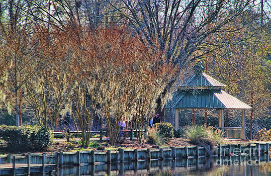 Riverwalk in the winter by Anne Pendred