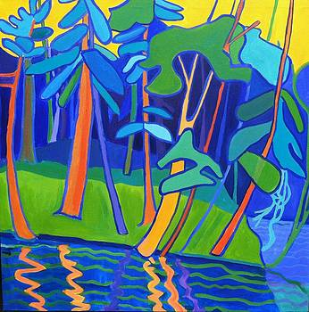 Riverwoods by Debra Bretton Robinson