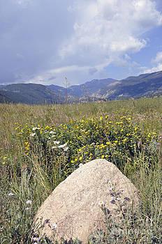 RMNP Scenic View by Minnie Lippiatt