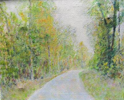 Country Road  by Glenda Crigger