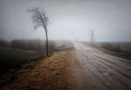 Road in the spring by Vladimiras Nikonovas