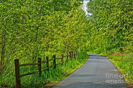 Road by Nur Roy