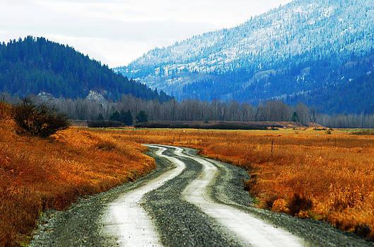 Road of Dreams by Annie Pflueger