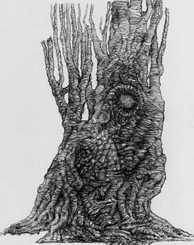 Road Show's Tree by Francesco Falcolini