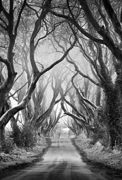 Road to dream by Pawel Klarecki