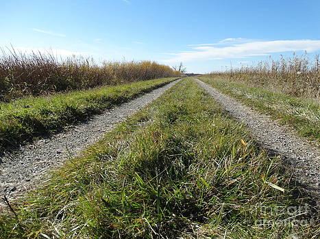 Road to Greener pastures by Jon Glynn