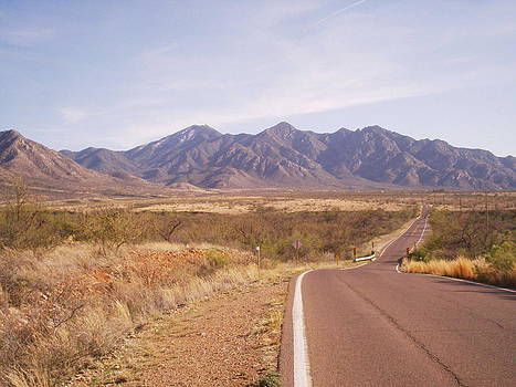 Road to Madera by David S Reynolds