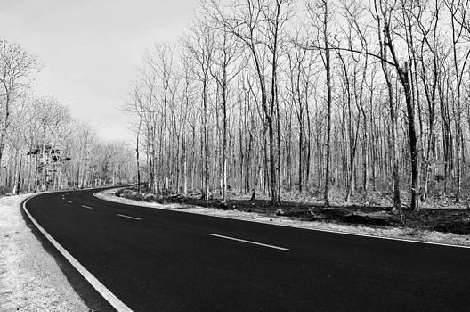 Road by Wayan Suantara